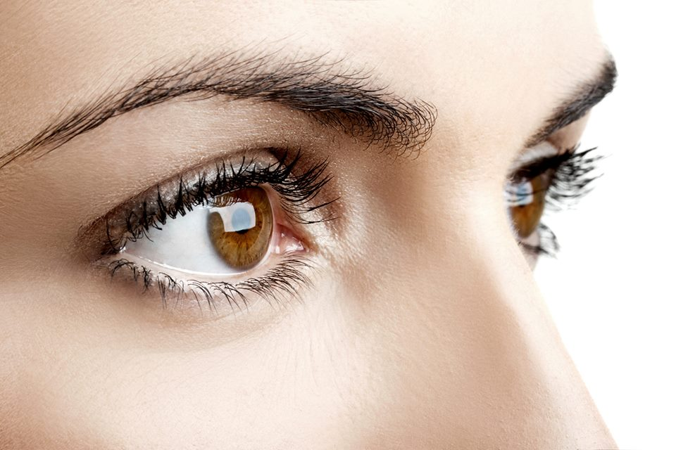 20 Facts About the Amazing Eye - Discovery Eye Foundation