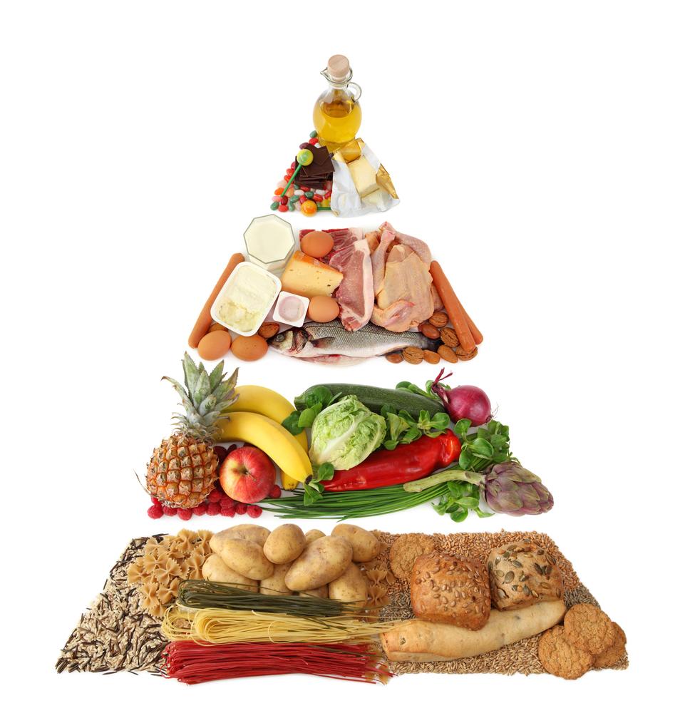 food pyramid - Discovery Eye Foundation
